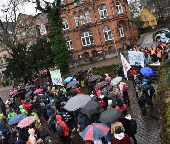 """Fridays for Future in Flensburg: """"Neues Jahr – alte Vorsätze!"""""""